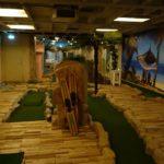 Indoor Minigolf_2020_01_11_19_51_30_HW