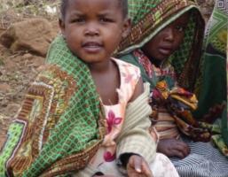Werkvakantie met Bosrand naar Malawi in zomer 2018